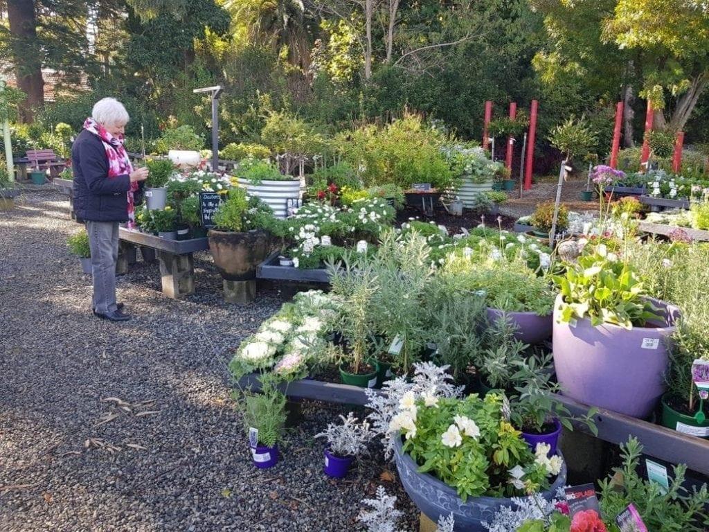 Dawson's Garden World Forrestfield
